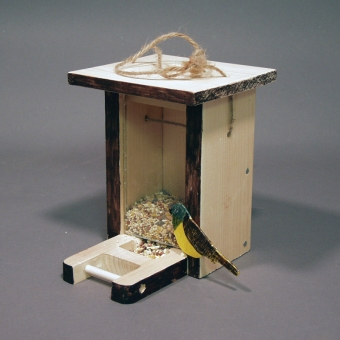 Environmental Design: Birdfeeder